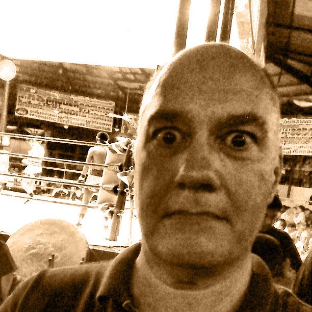 dog-at-thai-boxing