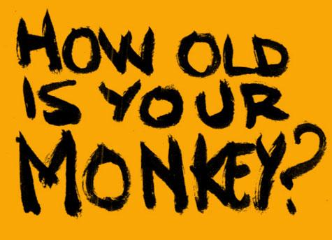 old-monkey