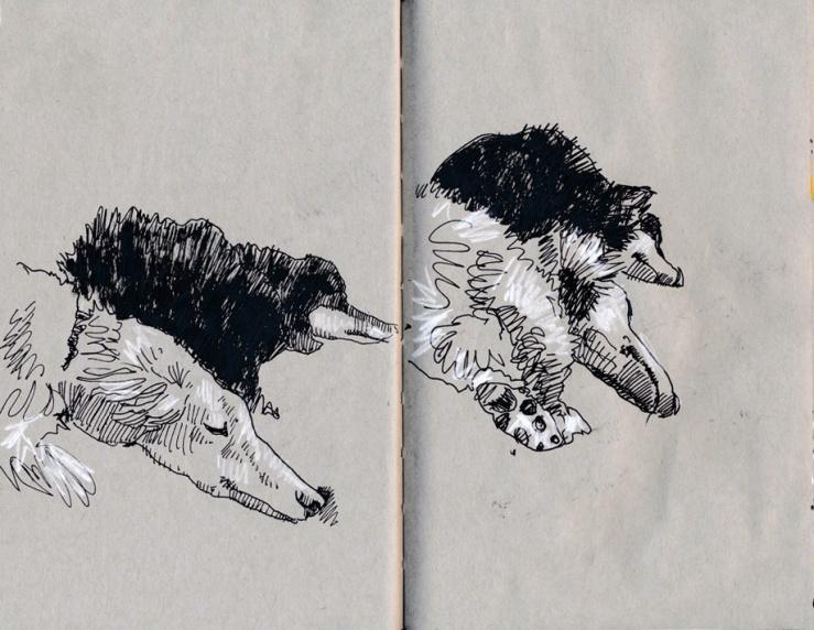 slumber honds