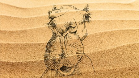 camel-and-sand