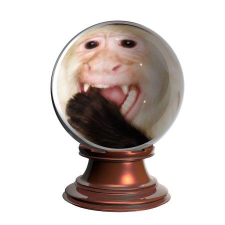 monkey-crystall-ball